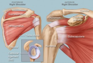 Image: omaha-orthopedic.com